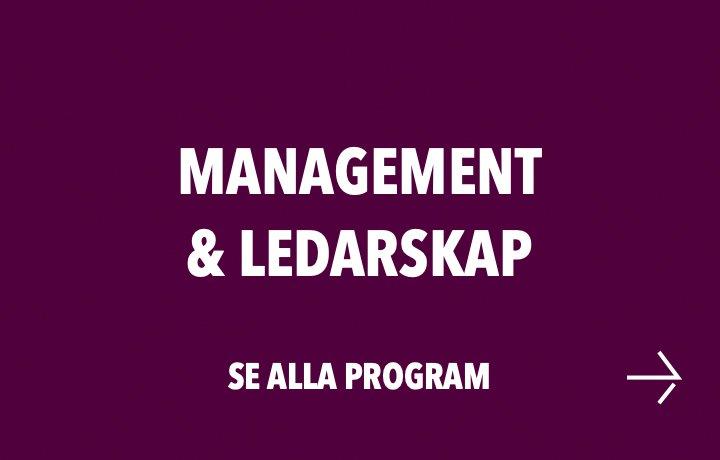 Management & Ledarskap